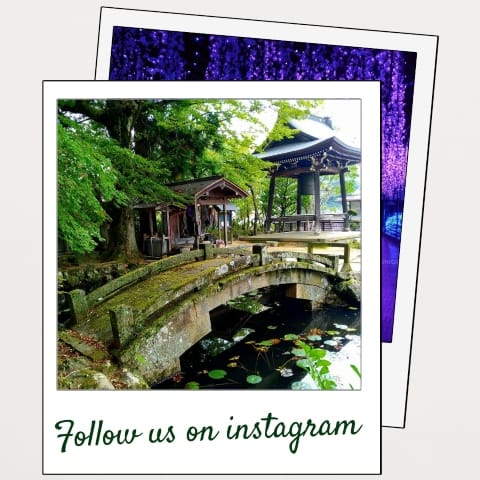 Pop Up Follower Instagram